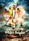 sorcerer and white snake