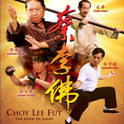 Choi Lee Fut