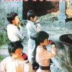 Super Kung-fu kids, el kung fu fantástico más demencial y barato